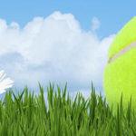 Speelschema voorjaarscompetitie